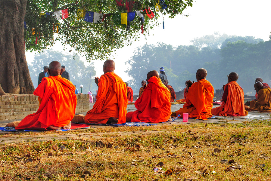 Monks praying in the morning by Baia Dzagnidze on 500px.com