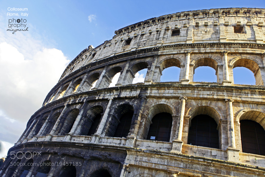 The Colloseum  by miaymarch _amatteroftaste (miaymarch)) on 500px.com