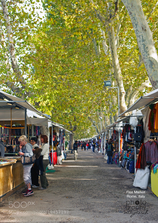 A Mercato Under Rows of Mulberry trees  by miaymarch _amatteroftaste (miaymarch)) on 500px.com