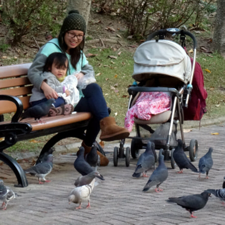 Mother, toddler and pigeon, Sony DSC-HX50V