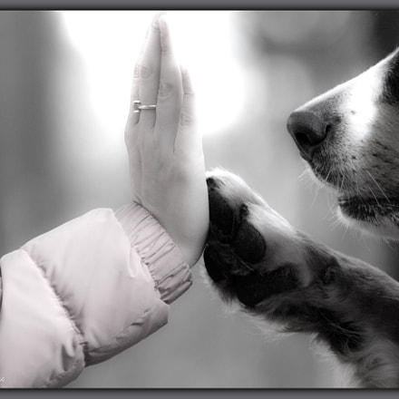 - high five -, Canon EOS 600D, Canon EF 75-300mm f/4-5.6