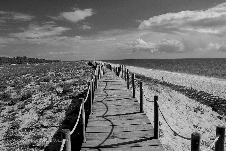 Photograph Autumn on Atlantic shore by Jarda Libal on 500px