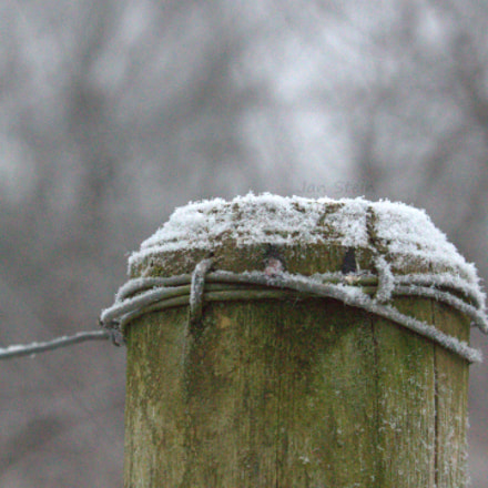 First Snow, Canon EOS 700D, Canon EF-S 55-250mm f/4-5.6 IS STM