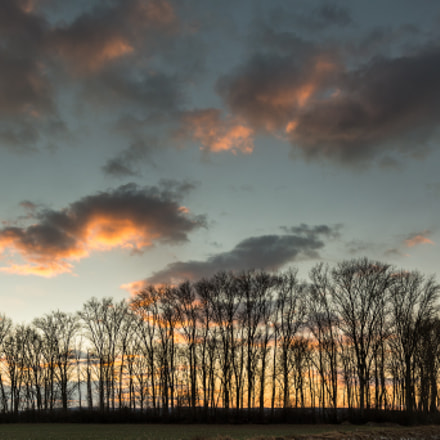 Sunset in the Hessian, Nikon D5200, Sigma 17-50mm F2.8 EX DC OS HSM