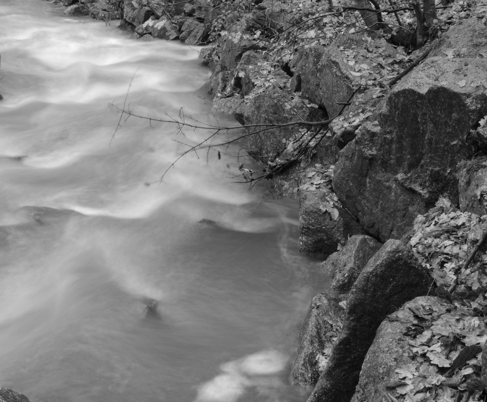 Photograph Flowing by miguel winterpacht on 500px