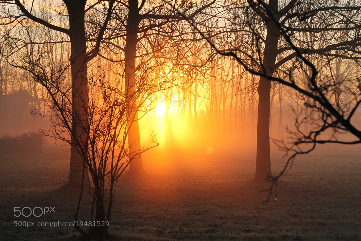 Photograph Rise sun  by Tineke Weetniet on 500px
