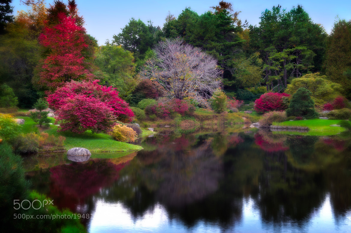 Photograph The Asticou Azalea Gardens, Maine by Rob Hanson on 500px