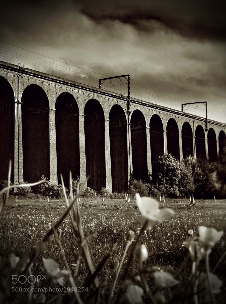 Photograph Digswell Viaduct, Welwyn by Ian Robertson on 500px