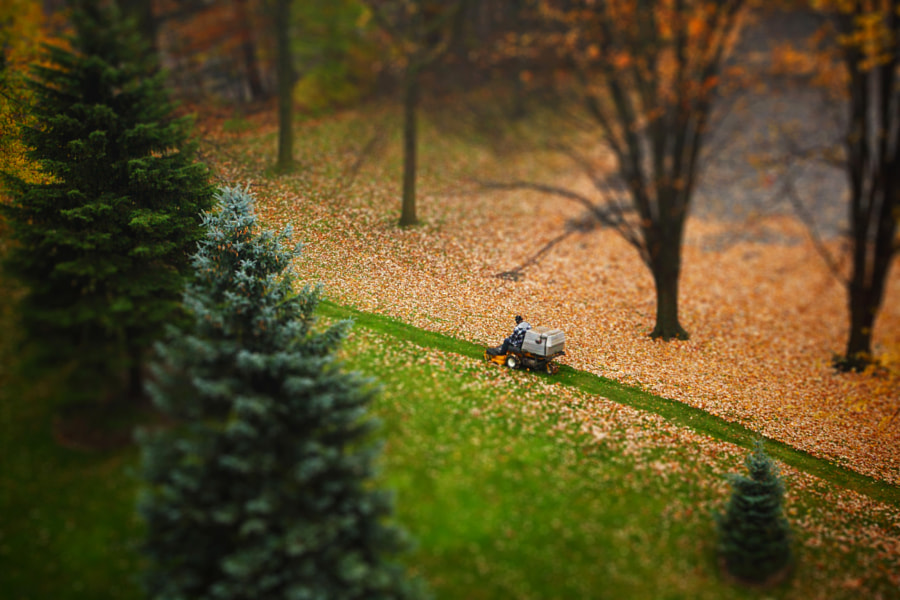 November Leaf Clean-Up by Yana Bukharova on 500px.com