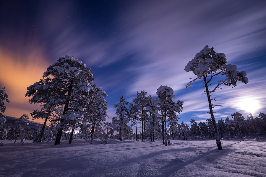 Night lights, автор — Adrian Szatewicz Photovisions на 500px.com