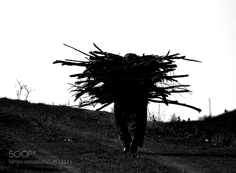 Photograph Burden Of Life by Mustafa GÜLOĞLU on 500px