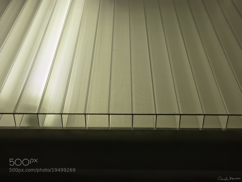 Photograph Piano. by Carol Honorio on 500px