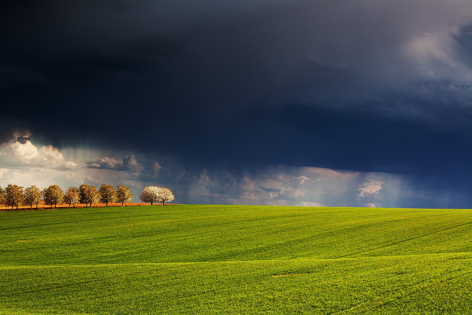 Photograph the approaching storm by Wael Massalkhi on 500px