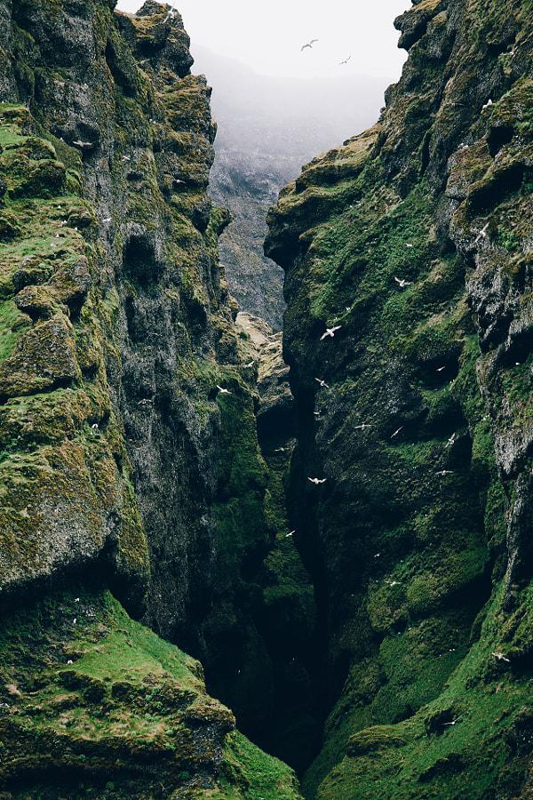 Bird Canyon