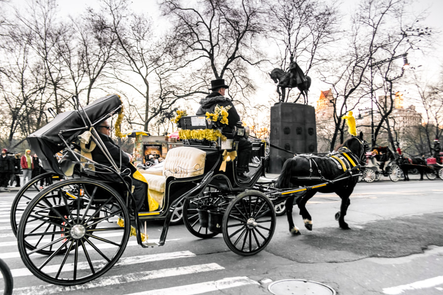 Horse carriage in Central Park by Luis Villeda on 500px.com