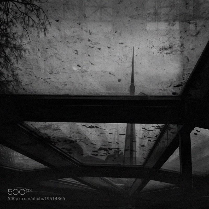 Photograph katatone by Emese-durcka Laki on 500px