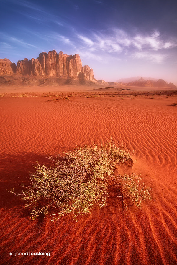 Photograph Wadi Rum by Jarrod Castaing on 500px