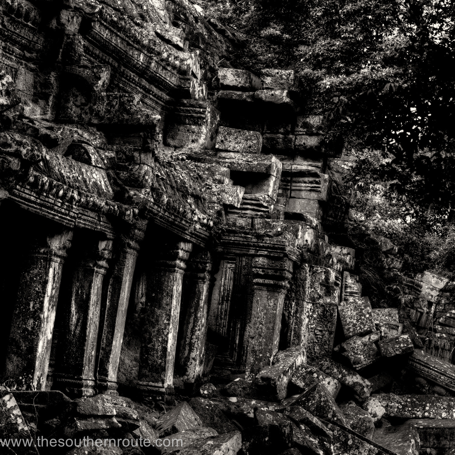 Photograph Angkor in tuxedo by regis boileau on 500px