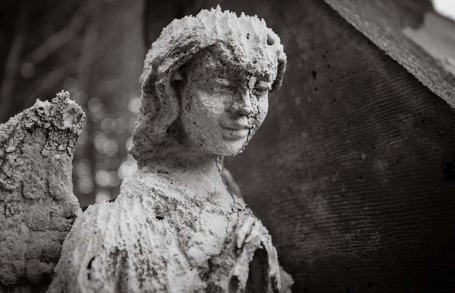 Angel in Black and White by Milo Denison on 500px.com
