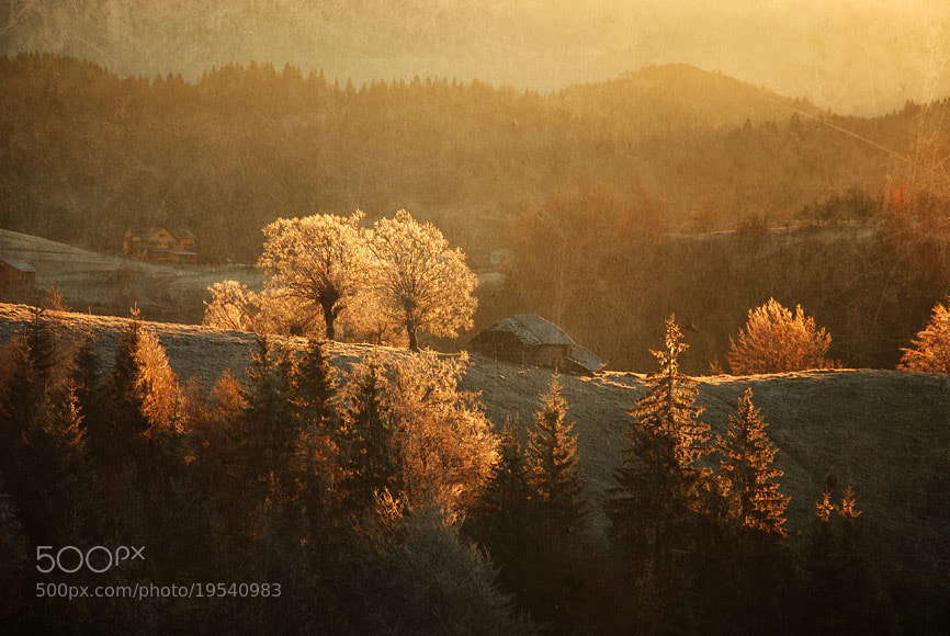 Photograph   by belu gheorghe on 500px