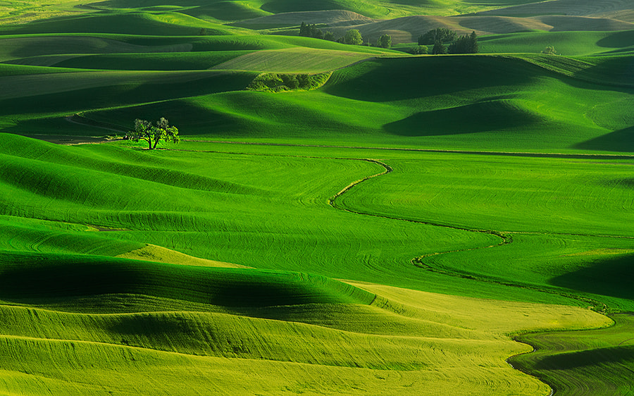 Photograph Meandering by Henrik Anker Bjerregaard  Lundh III on 500px