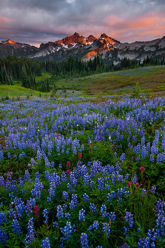 Photograph Tatoosh Range by Henrik Anker Bjerregaard  Lundh III on 500px