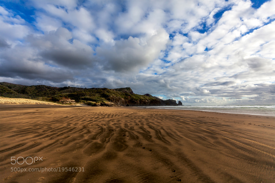 Photograph bethells beach by Dara Pilugina ✈ on 500px