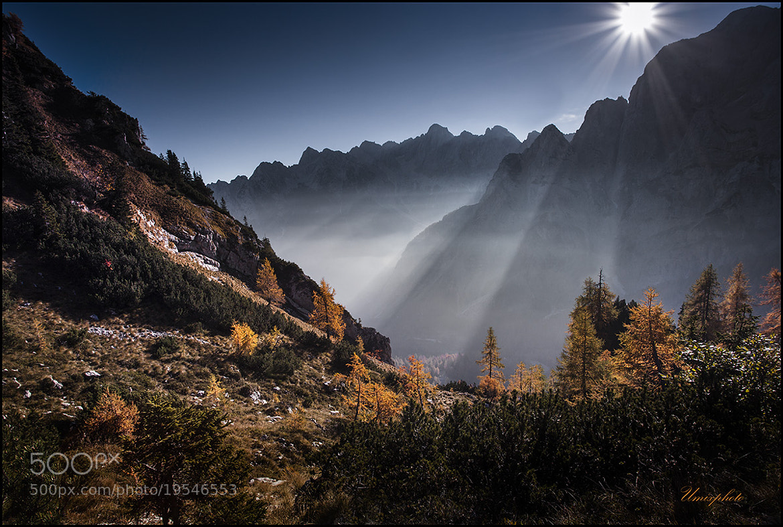 Photograph Autumn Morning by Jaro Miščevič on 500px