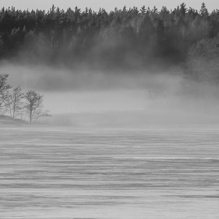 black and white mist, Canon EOS 1100D