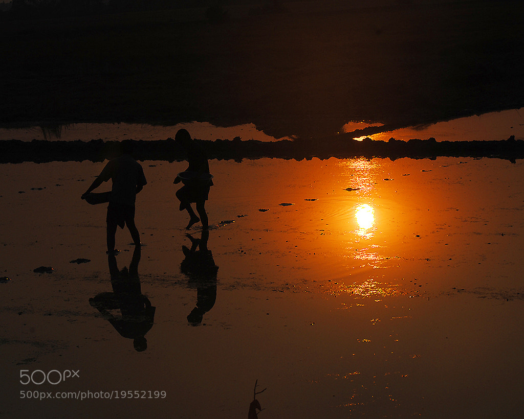 Photograph Evening show by Motiur Rahman on 500px