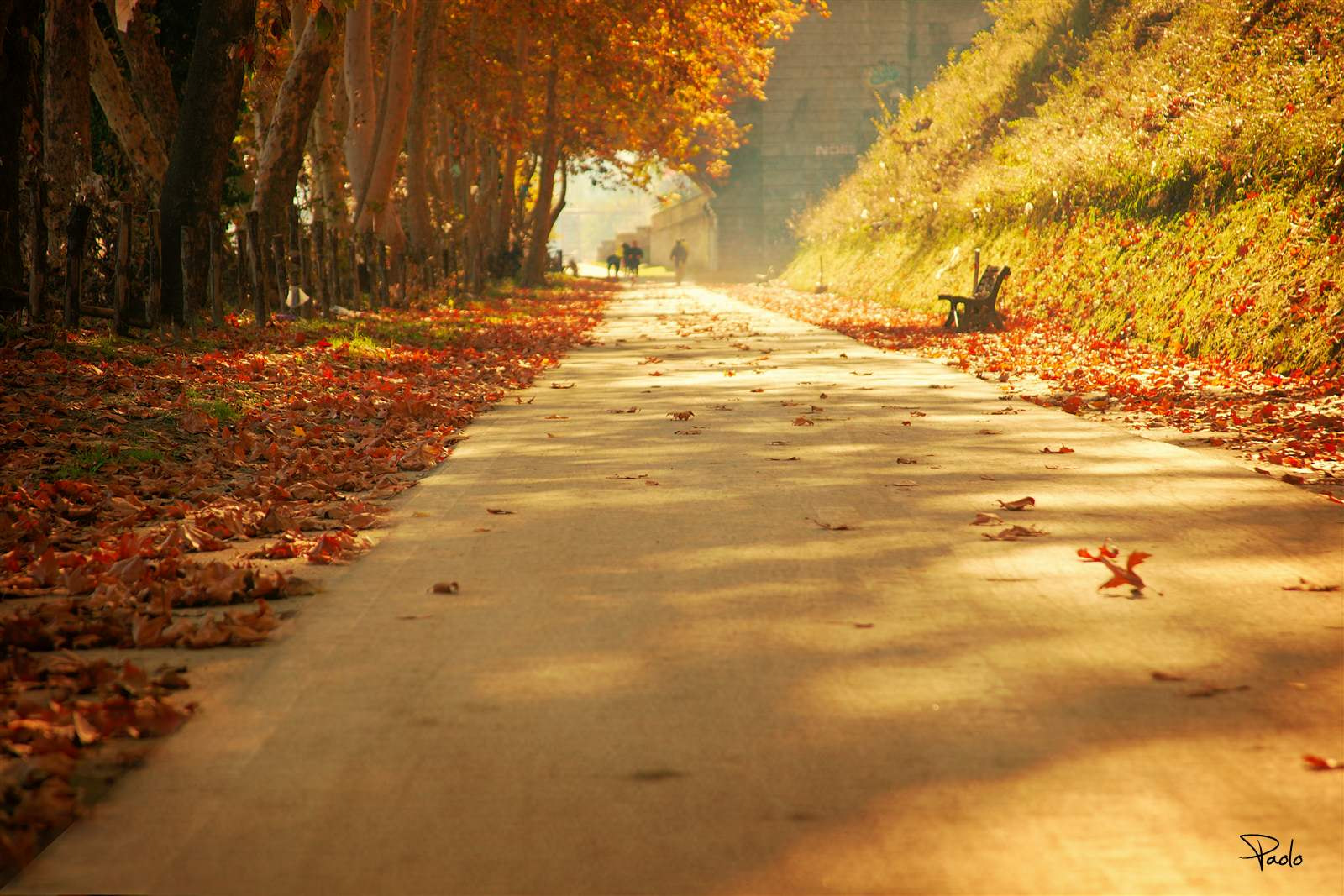 Photograph Autunno Romano - Autumn in Rome by Paolo Trofa on 500px