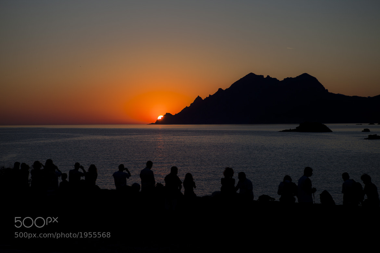Photograph Sunset Hunters by Béla Török on 500px