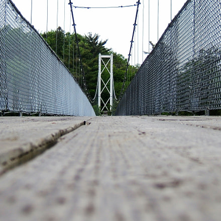 bridge, Fujifilm FinePix F810