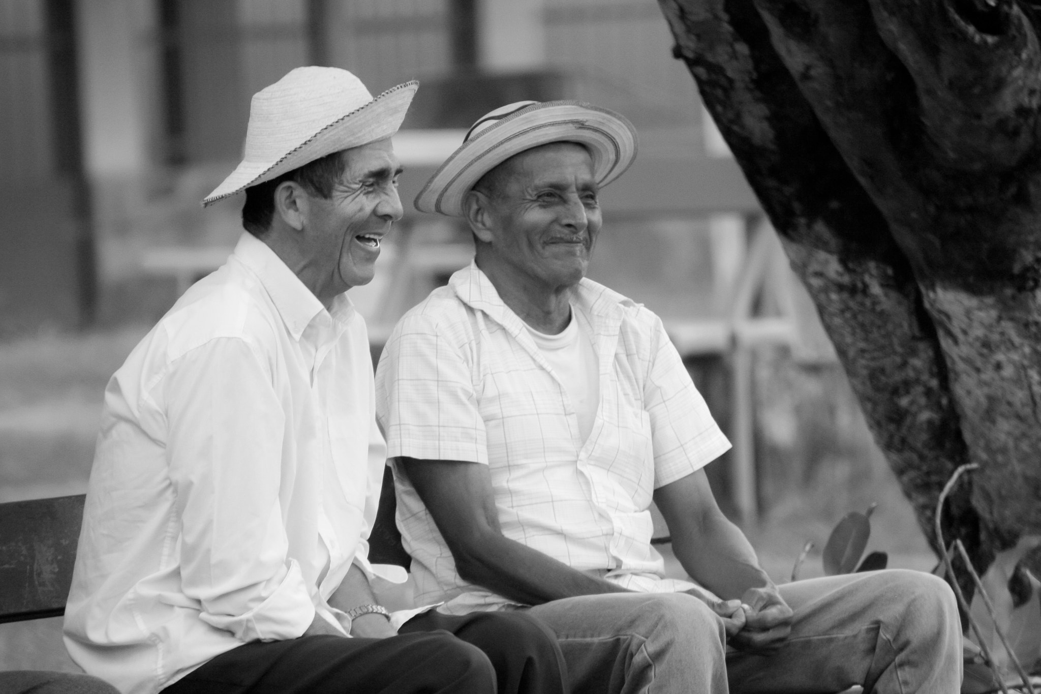 Photograph Origins of Panama Hats by Jonathan H. Lee on 500px