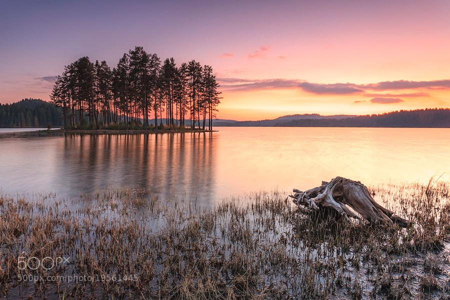 Photograph Modest Landscape by Evgeni Dinev on 500px