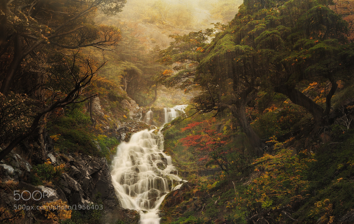 Photograph Lost between hell and paradise by Ambre De l'AlPe on 500px