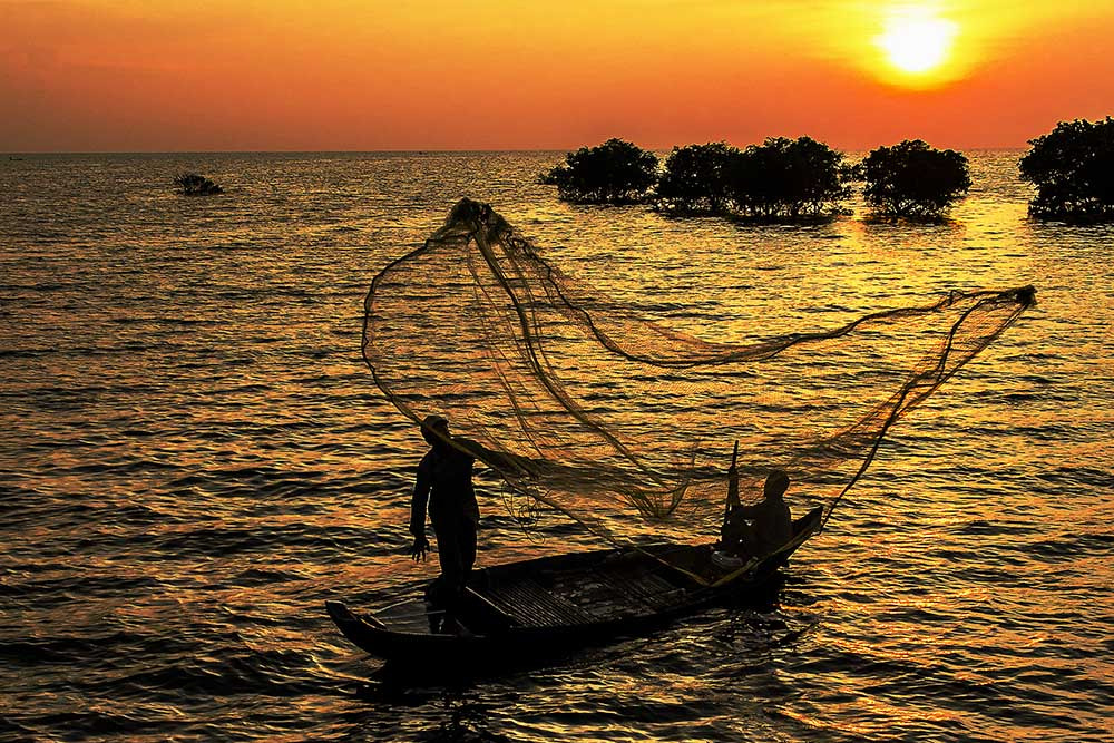 Photograph Net caster~ by Marcus Kam on 500px