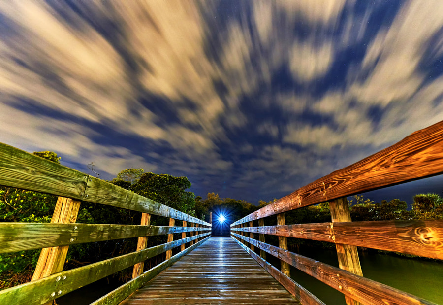 mangrove trail by Eric Mercadante on 500px.com