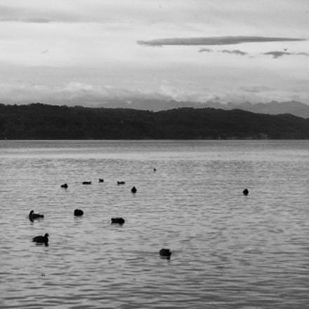A Morning at Lake, Nikon D1