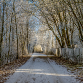 ... a winterway near around Ulm