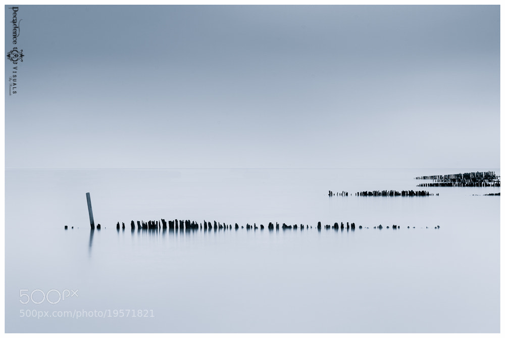 Photograph The Shore V by Ahmed S. Messaoudi on 500px