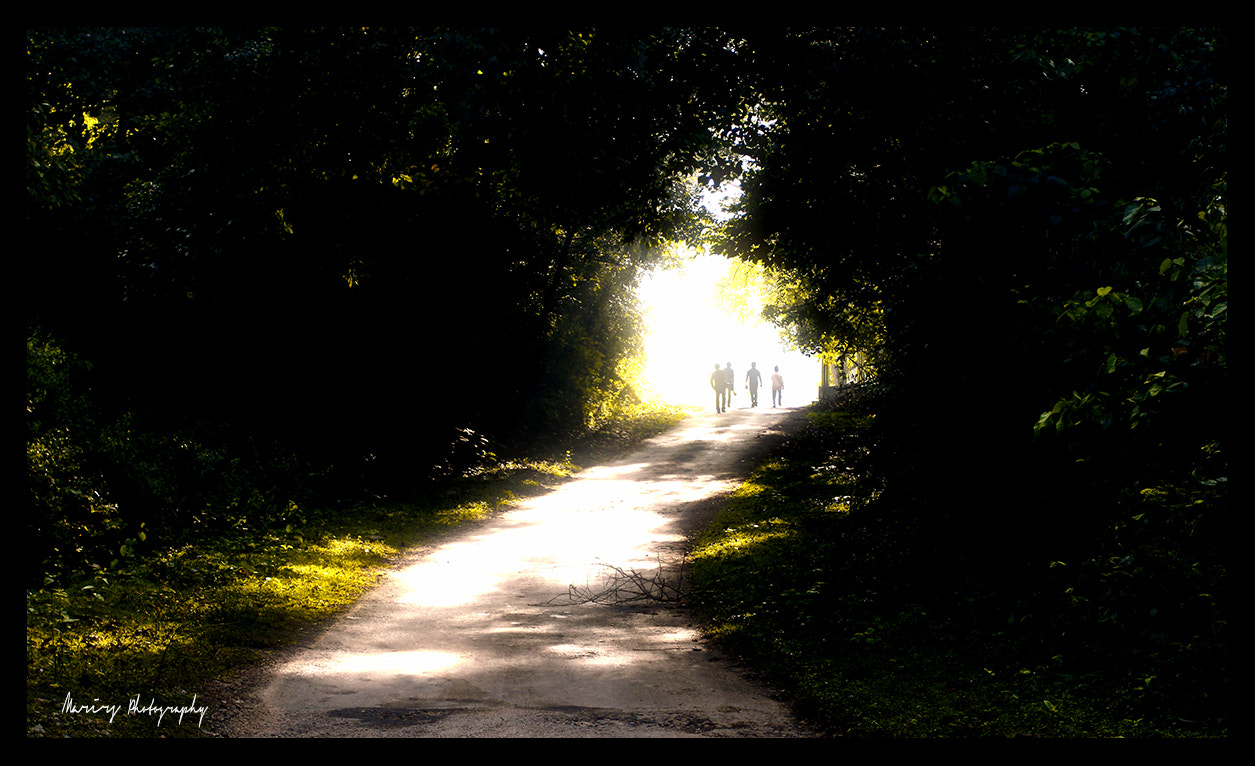 Photograph Morning Stroll by MARIRS | pнoтograpнy on 500px