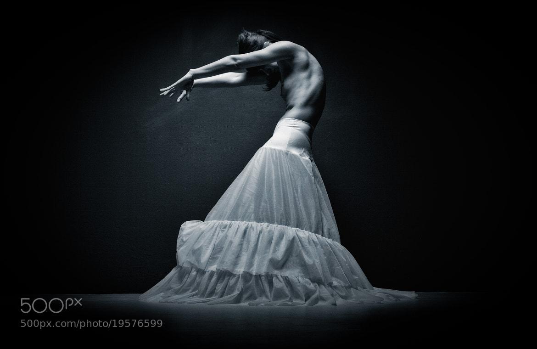 Photograph White Swan by Sascha Pietschmann on 500px