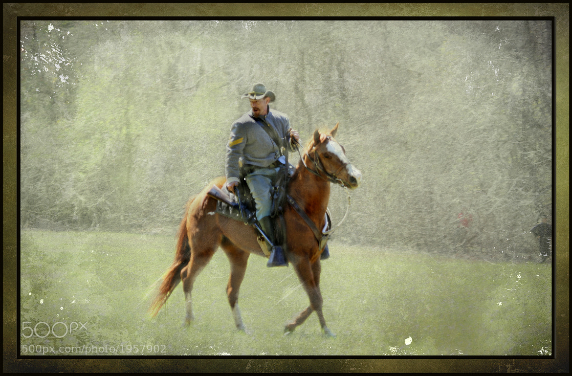Photograph The Scout by Tom  Shacochis on 500px