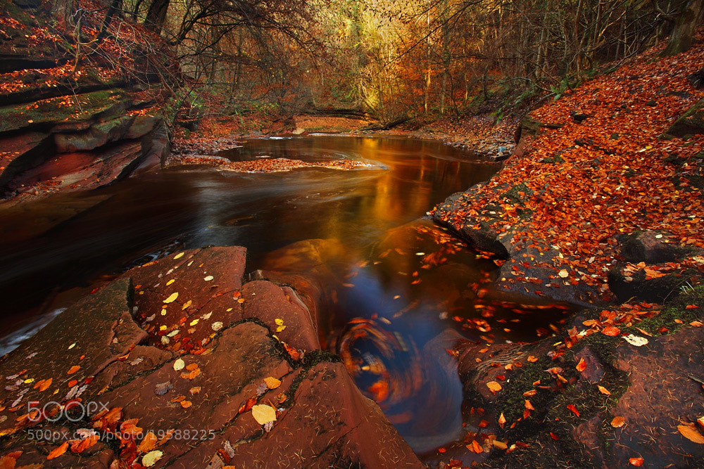 Photograph autumnsend by Neil Maughan on 500px