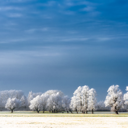 Magical Winter, Sony ILCE-7RM2, Canon EF 70-200mm f/4L IS