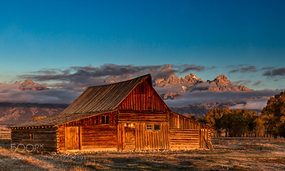 Photograph Mormon Row Sunrise by David  Bair on 500px