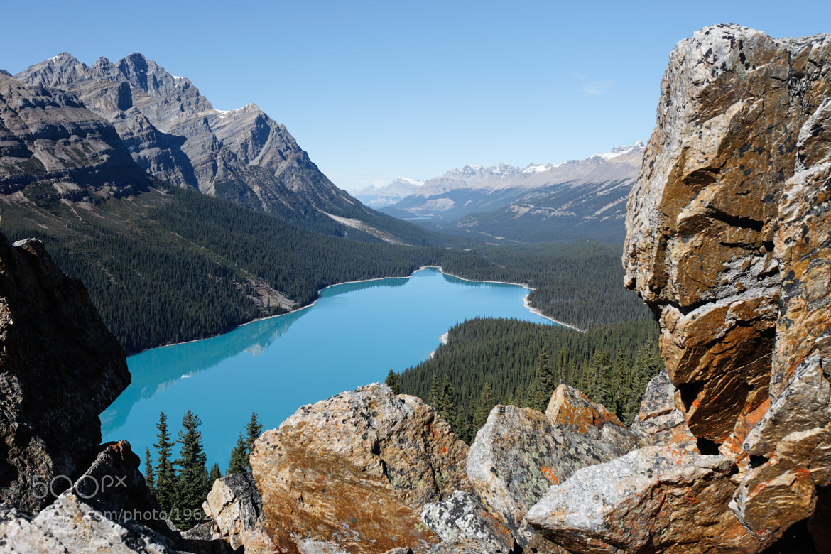 Photograph Peyto Lake by Ron Hiller on 500px