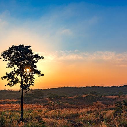 beautiful morning sunrise at grass field