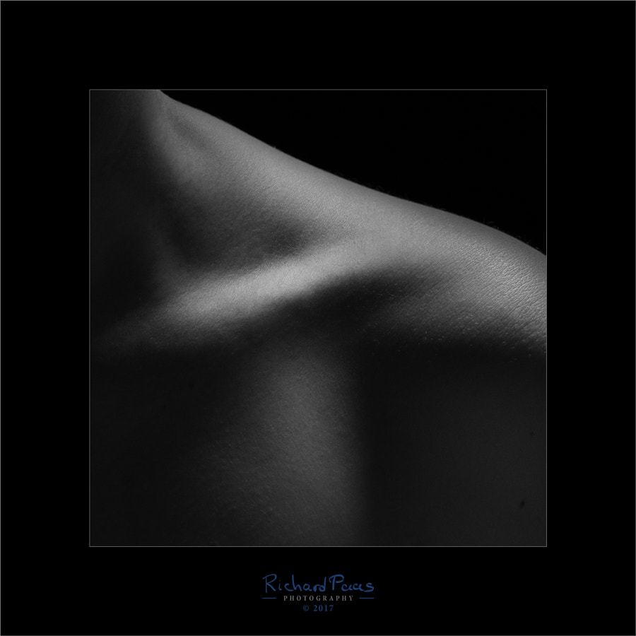 Clavicle by Richard Paas on 500px.com